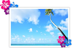 沖縄を拠点とした人生設計 沖縄移住を応援します。